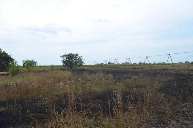 На Северной сгорело 3 гектара травы