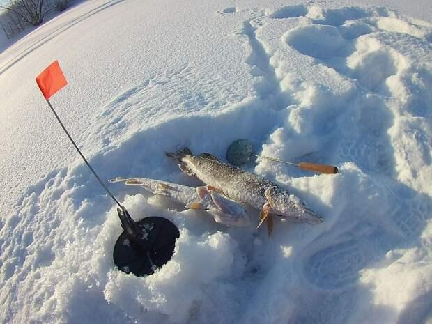 Рыбалка на жерлицы. с.Чапаево
