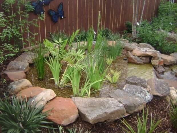 Экологический фильтр воды из водных растений