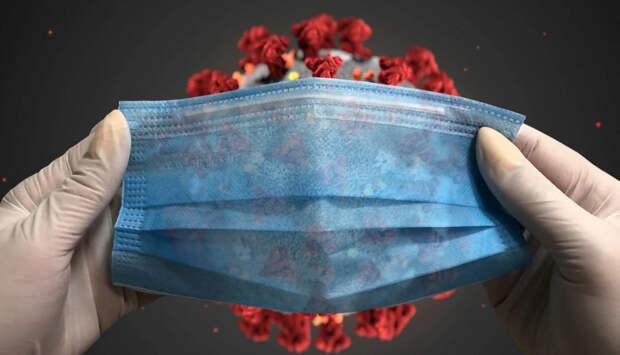 Либеральные СМИ разносят информационную инфекцию о коронавирусе