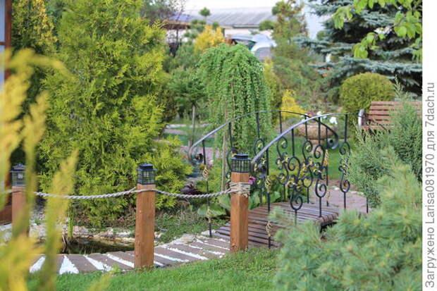 Пруд с деревянной дорожкой и кованным мостиком.