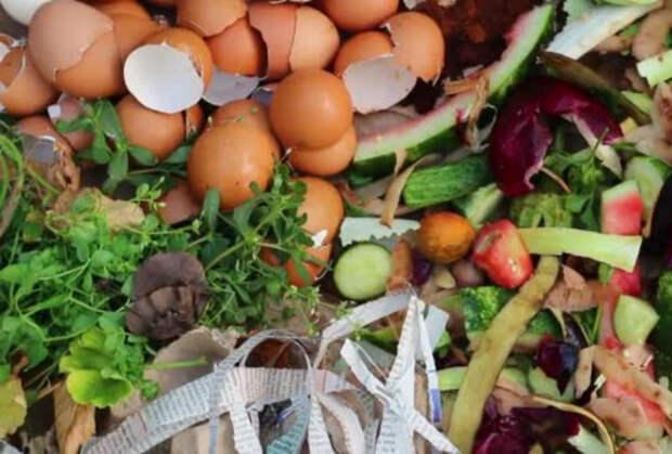Натуральные удобрения в саду. | Фото: Depositphotos.