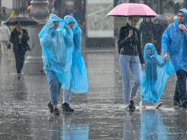 В понедельник в столичном регионе ожидается облачная погода и дождь