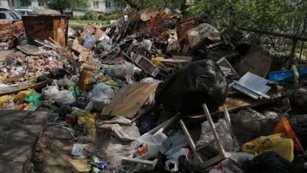 Бийчане жалуются на зловоние из-за завалов мусора рядом с баками