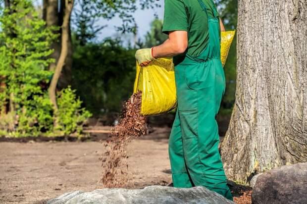 Урожай зерновых в России может оказаться под угроой: заявление аграриев