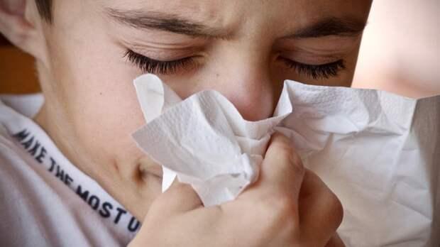 Врач рассказал, как аллергикам справиться с весенним обострением