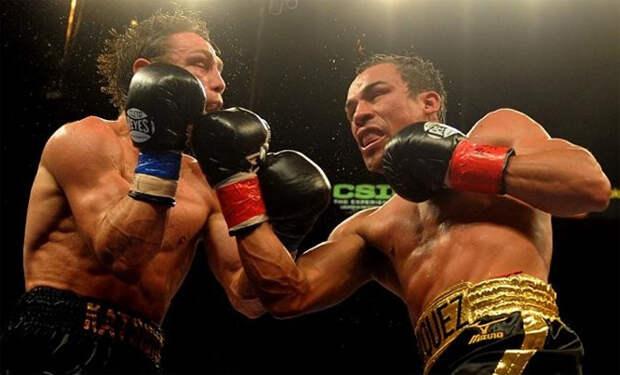 5 простых и действенных ударов из бокса