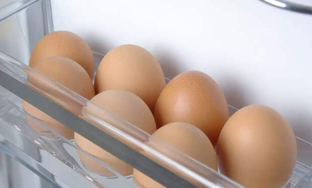 Храним яйца не в холодильнике: холод портит их защитные свойства от болезней