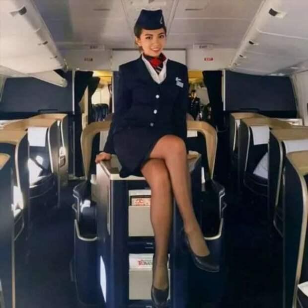 Ножки стюардесс. Подборка chert-poberi-styuardessy-chert-poberi-styuardessy-34370108022021-18 картинка chert-poberi-styuardessy-34370108022021-18