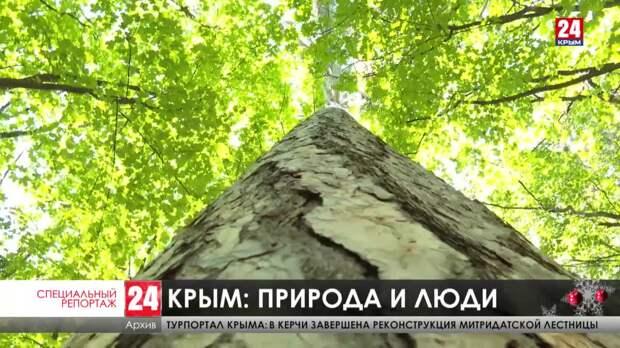 В Крыму появилось два новых природных заказника
