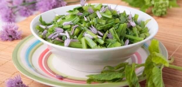 Салат из сныти: 6 полезных рецептов