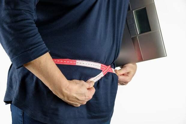Основные источники передания и лишнего веса