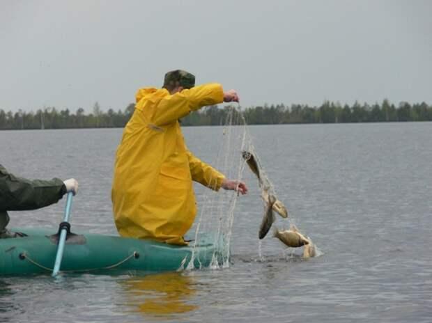 Закон о рыбалке: запрет на продажу сетей