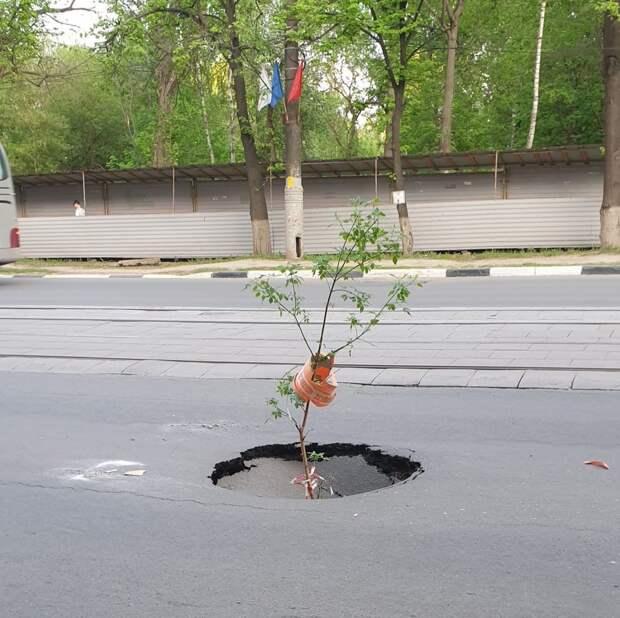 На улице Белинского в Нижнем Новгороде провалился асфальт