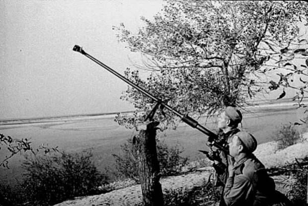 Можно ли было сбить немецкий самолет из винтовки-трехлинейки