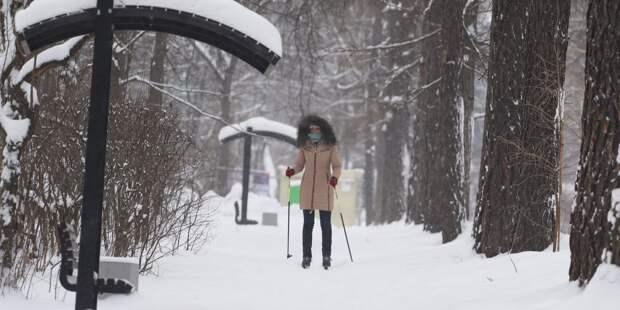 Сквер по Олонецкому проезду претендует на звание лучшего парка для лыжных прогулок