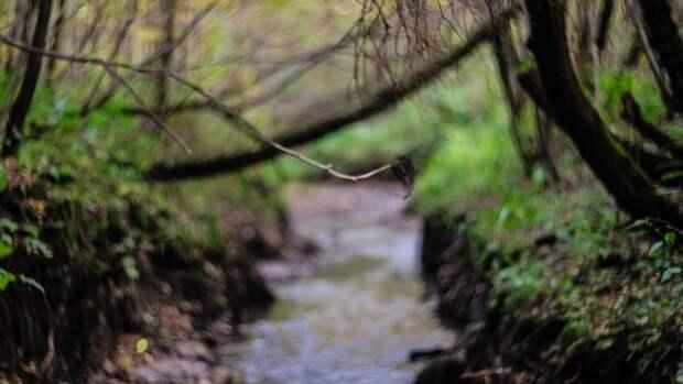 Тело подростка нашли в реке Чапаевке в Самарской области