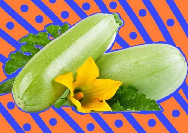 Этот овощ поможет при запорах: онколог назвала продукт, восстанавливающий работу кишечника