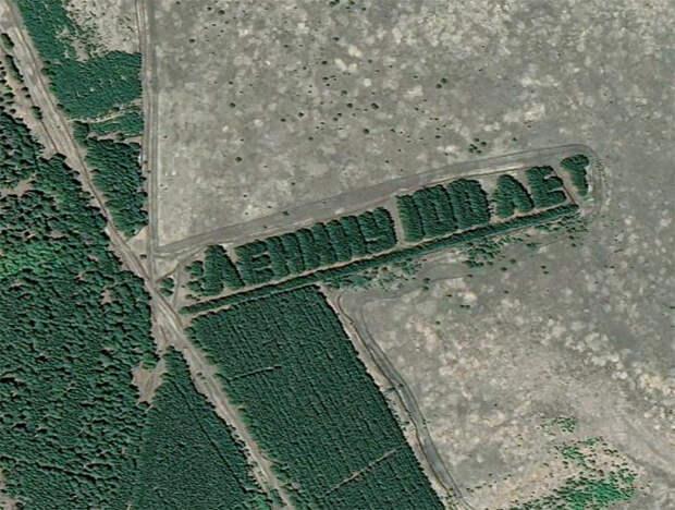 Советские надписи из деревьев, которые видно из космоса (ФОТО)