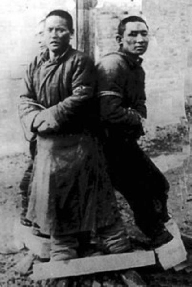 Отрчд 731 жертвы
