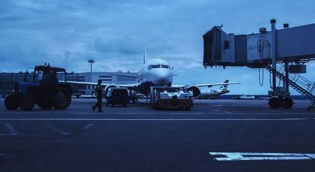 Мальта, Португалия или Мексика: открытие авиасообщения с какой страной интересует россиян больше всего