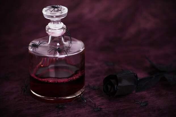 бутылка и паук