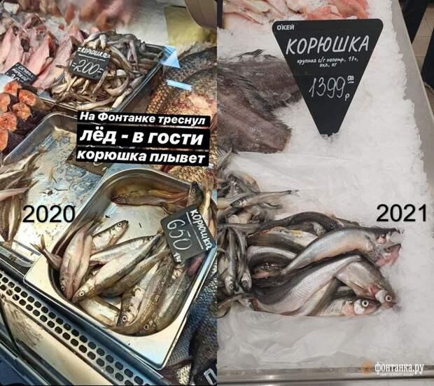 Корюшку по 1399 рублей за кило не желаете? «Пусть сами её едят за эти бабки!»