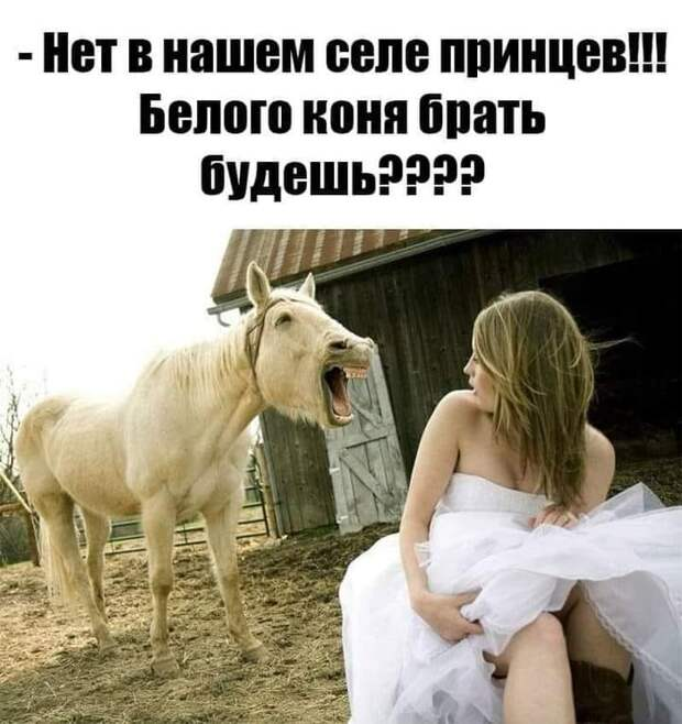 Жена ругается на мужа. Муж ей покорно отвечает...