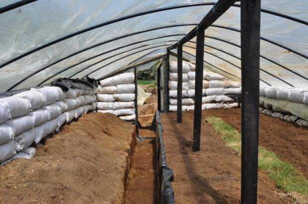 Органическое земледелие, пермакультура: земляная теплица