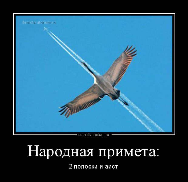 5402287_demotivatorium_ru_narodnaja_primeta_91576 (600x582, 80Kb)