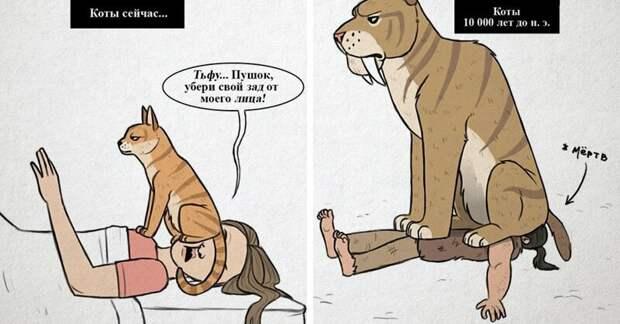 Кошки сегодня VS кошки 10 тысяч лет до нашей эры: основные различия в картинках