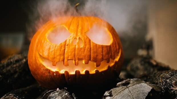 Страшный Хэллоуин страшного 2020: 5 идей, как провести время весело