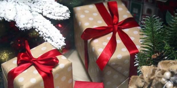 Новогодняя «Эстафета подарков» пройдет в демонстрационном павильоне МЦД. Фото: mos.ru