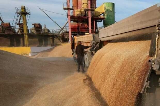 В Германии озабочены решением Путина снизить цены на продукты в России за счет Европы