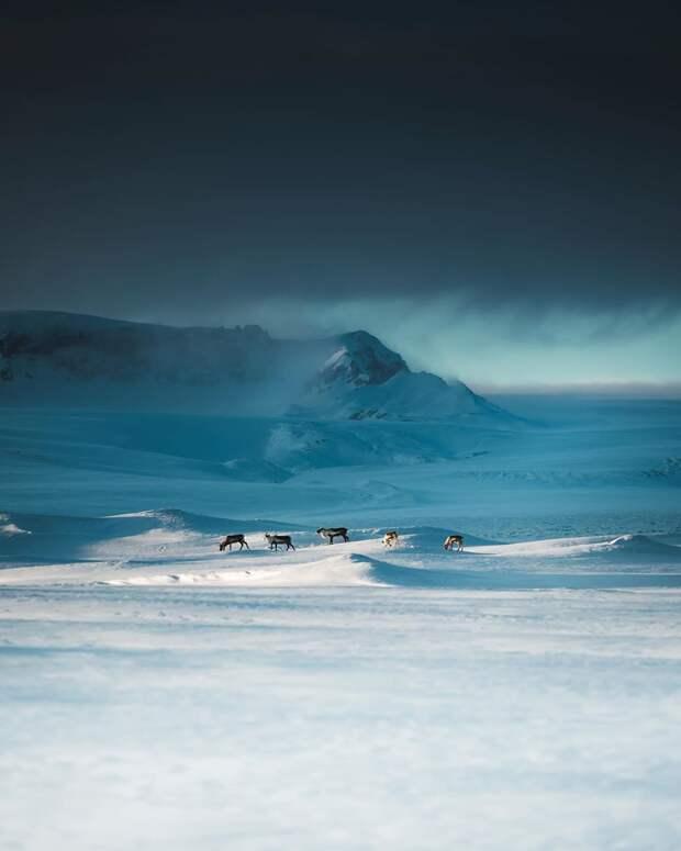 Высокая красота: аэрофотоснимки Бенджамина Хардмана
