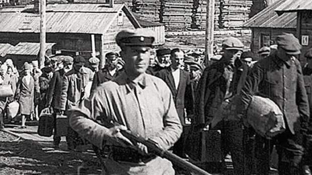 Чем занимались бандеровцы после освобождения из ГУЛАГа