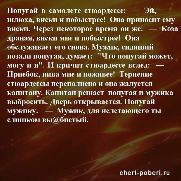 Самые смешные анекдоты ежедневная подборка chert-poberi-anekdoty-chert-poberi-anekdoty-57030424072020-11 картинка chert-poberi-anekdoty-57030424072020-11
