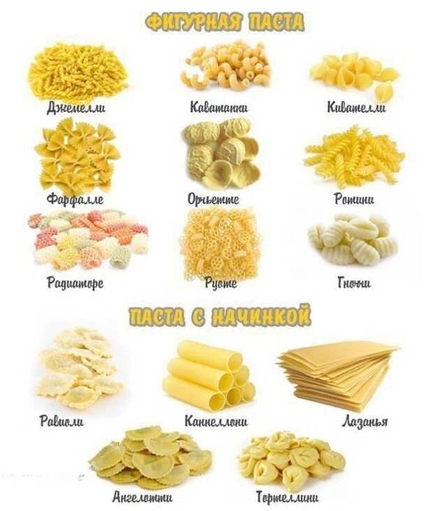 Виды итальянских макарон (пасты) и их назначение