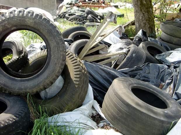 Жители Киясовского района продолжают возить мусор на закрытую свалку