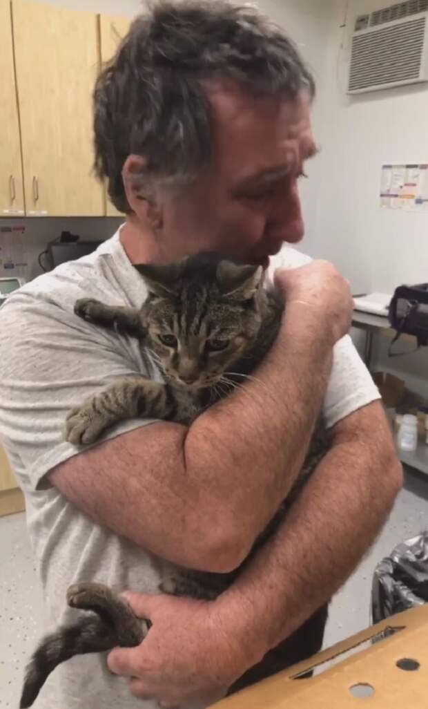 Трогательная встреча мужчины с котом после 7 лет разлуки