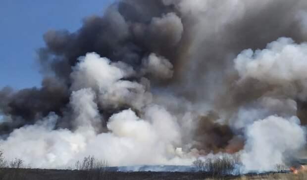 Сильный ветер вТюменской области может ускорить распространение пожаров