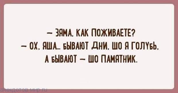 Несколько отличных шуток из Одессы — заряд позитива!
