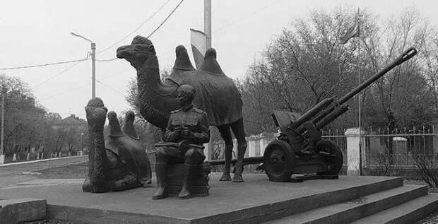 Как верблюды, олени, ослики и другие животные помогали сражаться с фашистами