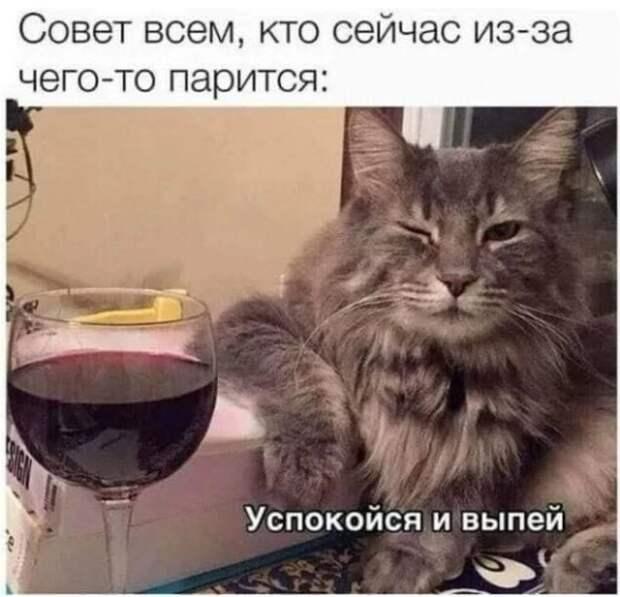 Приколы про алкоголь после прошедших выходных