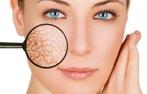 Самые отвратительные факты о человеческой коже