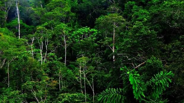 Опасное далеко: 10 невероятно красивых, новнушающих страх мест