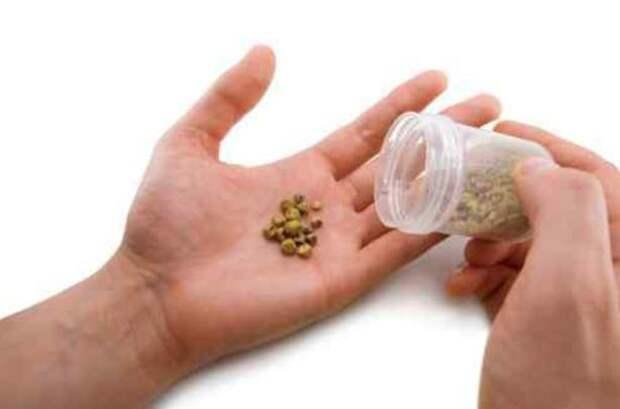 Камни в почках - дикая боль. Выводим без операции простыми рецептами. Травы, которые безболезненно дробят камешки
