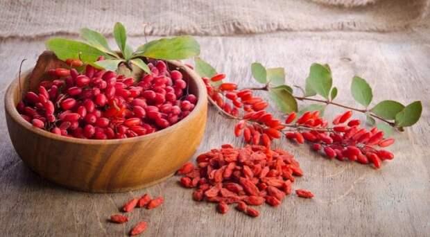 Волчья ягода (Годжи, лайчи): полезные свойства, побочные эффекты и дозировка