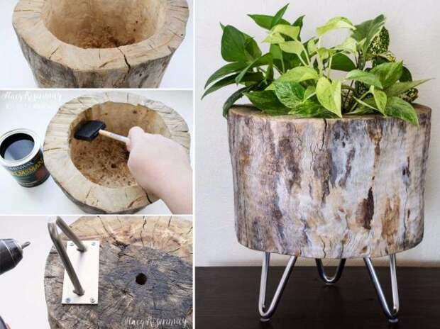 Вот как превратить пни и бревна в ″живые″ сады