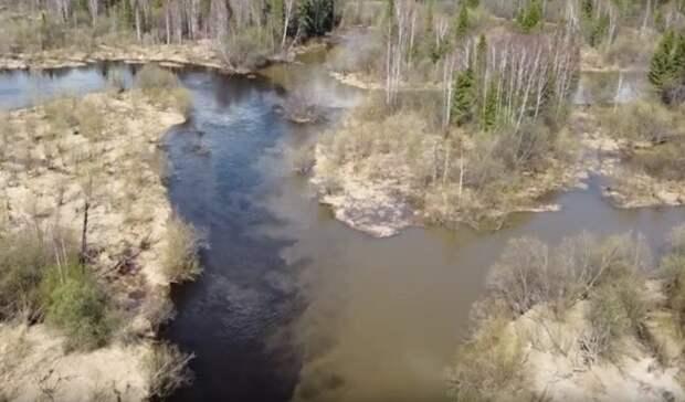 Свердловская река позеленела отзагрязнения (видео)